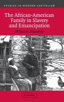 The African-American family in slavery and emancipation /