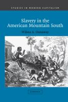 Slavery in the American Mountain South /