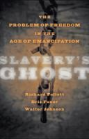 Slavery's ghost : the problem of freedom in the age of emancipation /